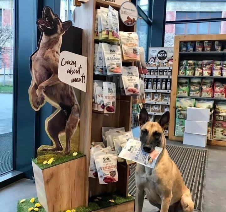 Ovčák Éro šílí v obchodech po Brit Meaty Jerky